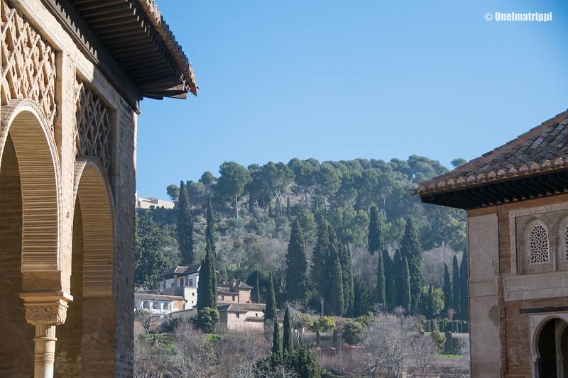 20170323-Unelmatrippi-Alhambra-DSC0561