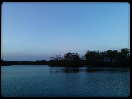 lincolnwoodsstatepark flickrandroidapp:filter=none
