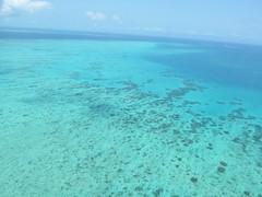 Great Barrier Reef IMG_0365