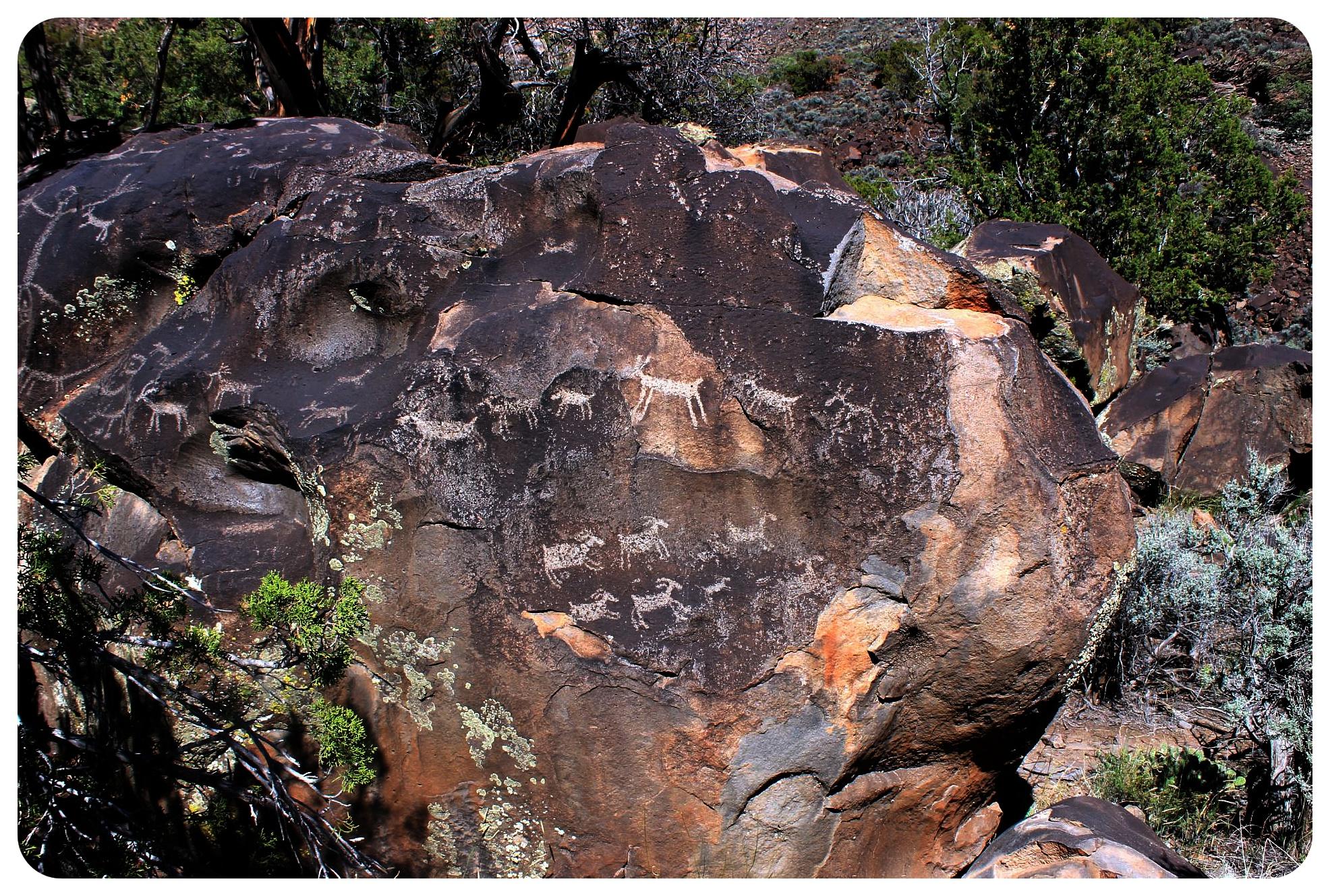 rio grande gorge petroglyphs new mexico