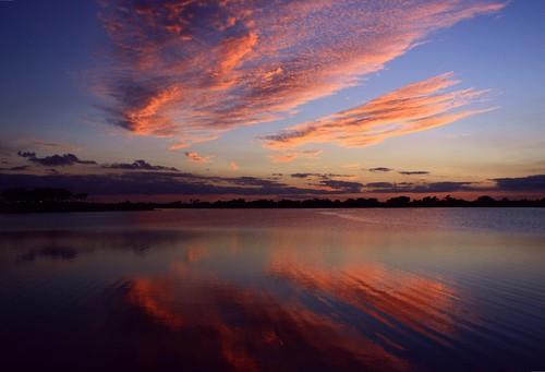 sunset lake reflection texture nature beauty silhouette palms landscape cool unitedstates natural florida clear chop cloudscape floridaeverglades southflorida palmbeachcounty slightbreeze bocaratonflorida redripple southcountyregionalpark quartasunset212