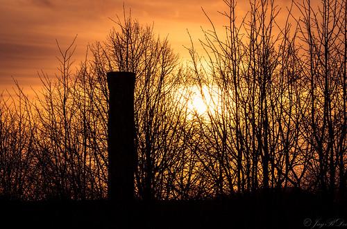 sunset tree tower silhouette architecture backlight germany deutschland tramonto sonnenuntergang pentax hamburg sigma architektur backlit turm baum gebäude germania zeit gegenlicht amburgo k30 rothenburgsort sigma18250dcmacro sigma18250mmf3563dcmacro