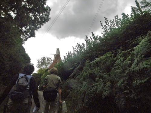 Oasthouse Hever to Ashurst