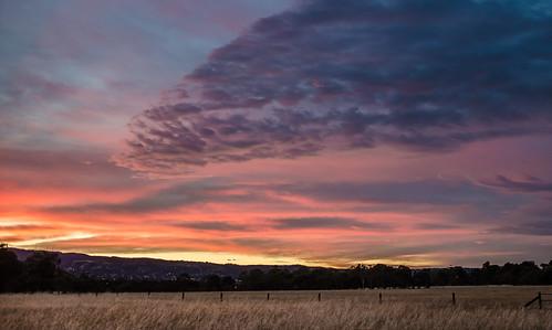 sky night clouds dawn cloudy au australia adelaide sa southaustralia 214 2013