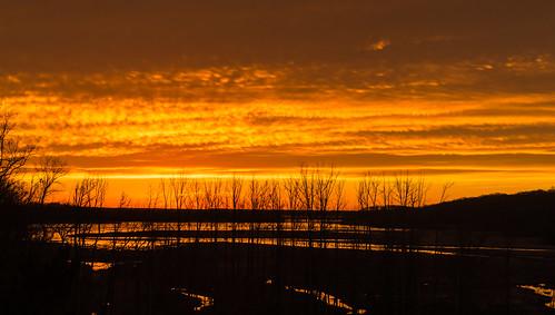 sunset usa art night america photography virginia photo nikon unitedstates cloudy va wetlands woodbridge lightroom d600 princewilliamcounty juliejmetzwetlands
