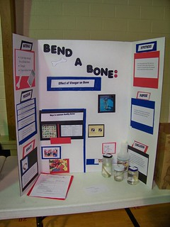 Northern Indiana Adventist Science Fair