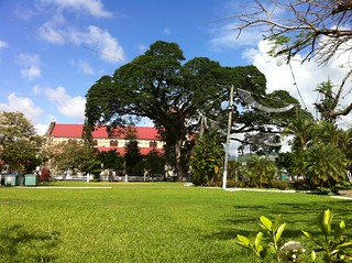 Derek Walcott Square, Castries, St Lucia | by Guide to St Lucia