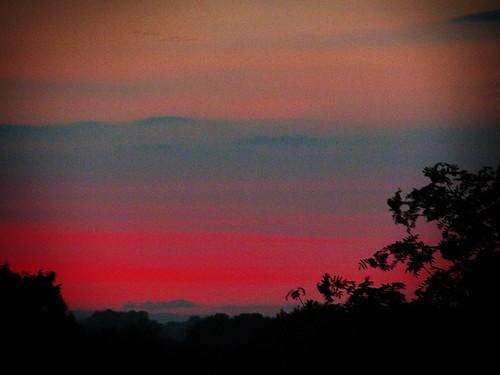 trees sunset red sky orange silhouette clouds lofi hills