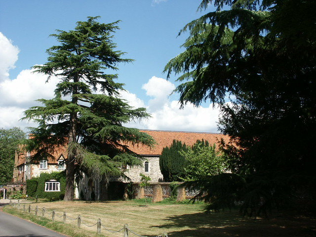 The tower of the old Benedictine priory hides behind a yew tree in the village of Hurley