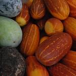 Abu Dhabi di?a 1 Mercado pollos datiles verduras 03