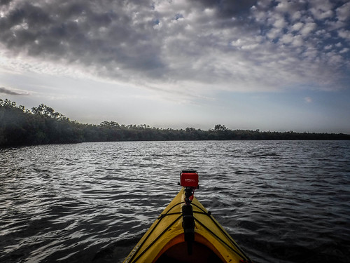 florida fortpierce indianriver kayaking paddling queenscove unitedstates us