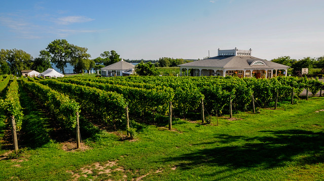 Waupoos Winery-0728