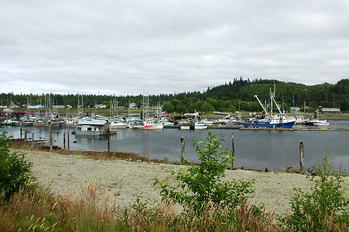 Masset Harbour, Masset, Graham Island, Haida Gwaii (Queen Charlotte Islands), British Columbia, Canada