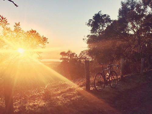 sunrise cycling bianchi 1885 roadcycling gibbing bianchilife