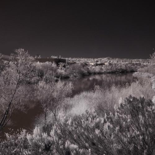 ir infrared infraredphotography convertedinfraredcamera surreal sandiegoriver landscape nature naturalbeauty naturephotography reflections