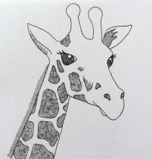 Картинки жирафов для срисовки, для мужчин