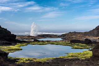 Tidepools in Yachats, Oregon | by Scooter Lowrimore