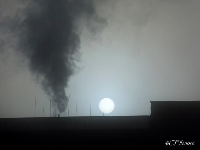 Sonne im Nebel  / sun in the fog