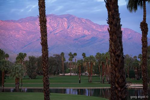 ca trees vacation mountains reflection green sunrise golf us spring flickr palmsprings april ranchomirage lightroom 2014 desertisland topazadjust topazdenoise canoneos5dmarkiii ef70200mmf28lisiiusm