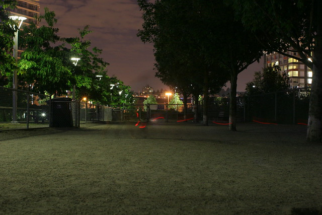 Dog Park at Night with an LED Collar