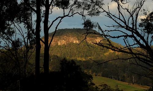 sunset plants mountain nature countryside scenery australia nsw australianlandscape volcanics northernrivers australianmountains towermtn