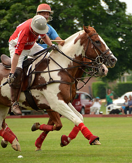 Lancaster Polo -12 Kathy | by KathyCat102