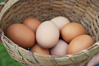 Eggs in Basket | by UnitedSoybeanBoard