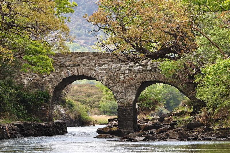 Bridge In Killarney National Park