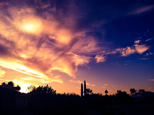 blue sunset arizona cactus sky cloud silhouette clouds skies suncitywest