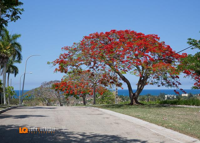 Strada Santa Maria del Mar - Ciudad de la Habana