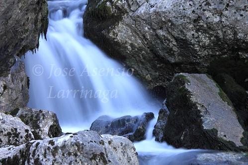Parque Natural de Gorbeia #DePaseoConLarri     #Photography 3376