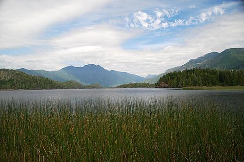 Clayoquot Arm Provincial Park, Pacific Rim, Vancouver Island, British Columbia, Canada