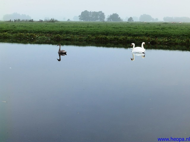 12-10-2013 Stolwijk  25.5 Km (11)