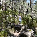 06 Viajefilos en Australia. Cathedral Rock NP 28