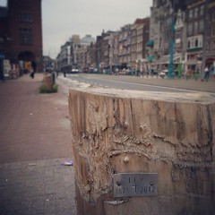 tribute to a tree #amsterdam #damrak #iep #streetart