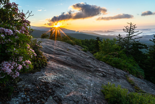 flowers trees sky sun mountains nature fog clouds sunrise landscape outdoors nc spring highlands rocks northcarolina sunburst appalachian mountainlaurel valleys landscapephotography beaconheights