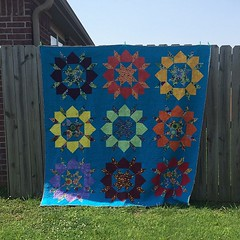 Good sun makes for pretty quilt pictures. #swoonalong #finishit2015