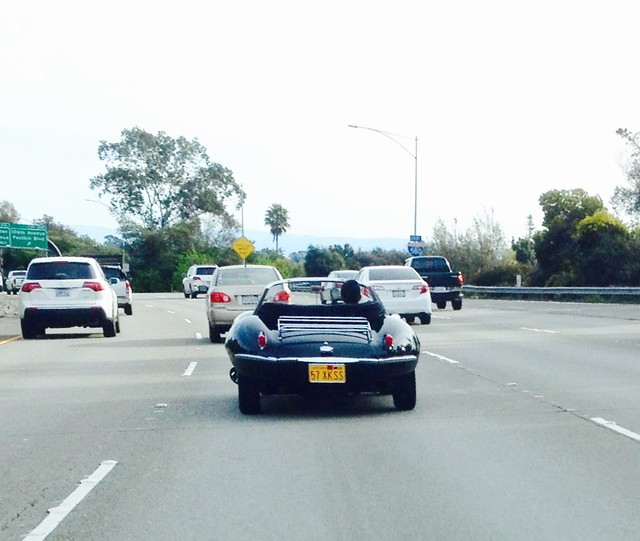 Jaguar XK-SS 1957 from dead aft on 580 South IMG_2022