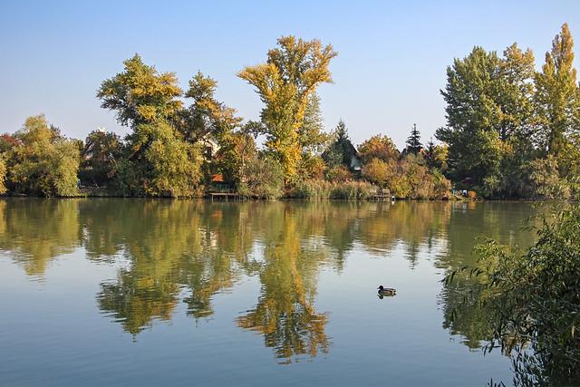 Budapest, Csepel - small Duna shore reflections 2