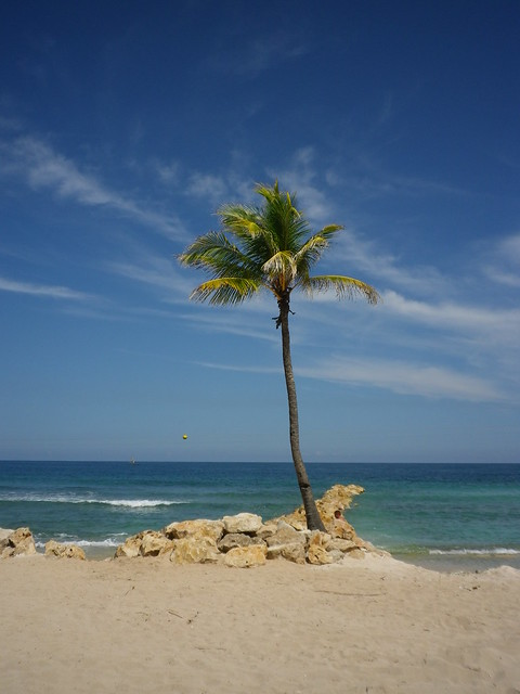 Caribbean Vacation 2013
