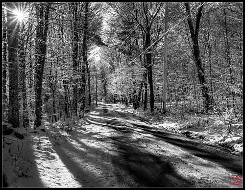 snow walk winter2013 royalston massachusetts unitedstates bw sunburst sunrays