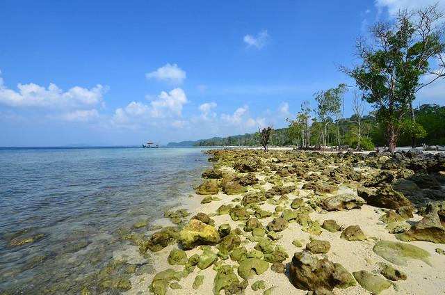 Havelock Island (Andaman 141)