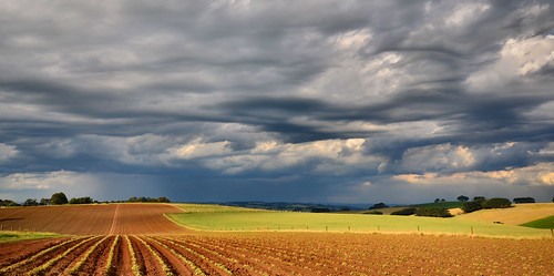 summer sky storm weather clouds rural potatoes nikon skies farm australia stormy victoria vic crops gippsland thorpdale d5100 nikond5100 phunnyfotos gippypics