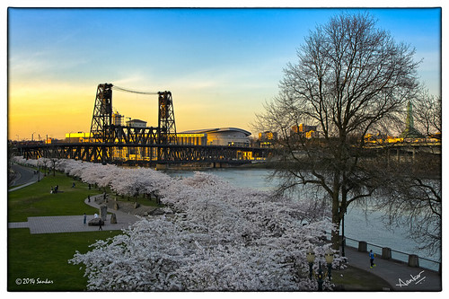 morning bridge sunset panorama water beautiful skyline oregon sunrise portland landscape lights twilight downtown cityscape waterfront or hawthornebridge stitching photomerge pdx hdr merge willamette sankar waterfrontpark firstlight portlandskyline colorefex japaneseamericanplaza viveza megapano define2 photoshopcs6 sankarraman msankar