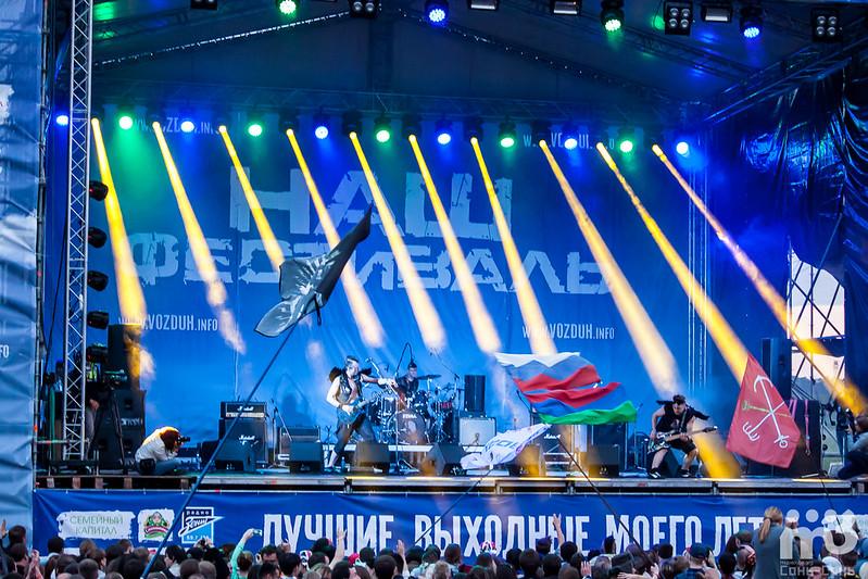 Скворцы Степанова-16