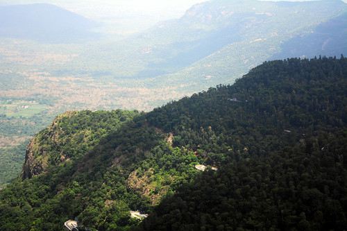 india tamilnadu yercaud ladysseat shevaroyhills