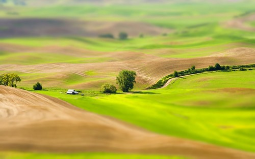 over the hill - tilt shift | by that1guy_Dean
