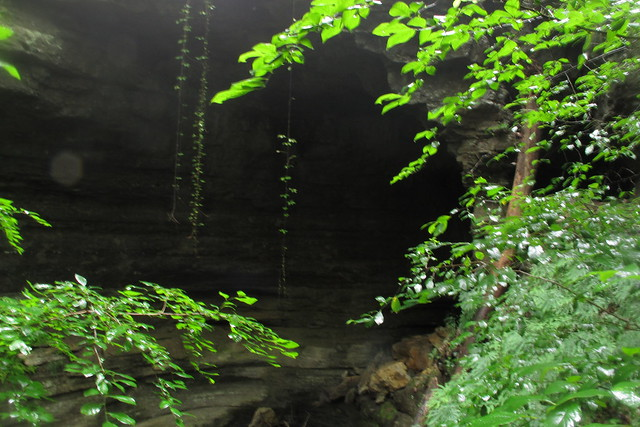 Maxwell Cave