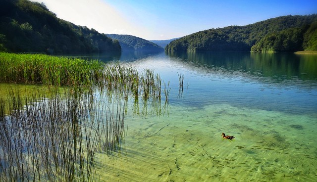 Clear waters at Plitvice National Park, Croatia