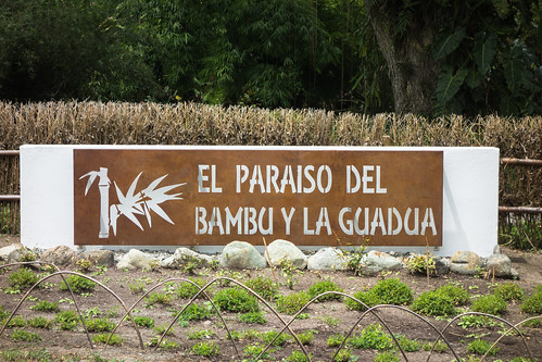 Paraíso del Bambú | by The Colombian Way